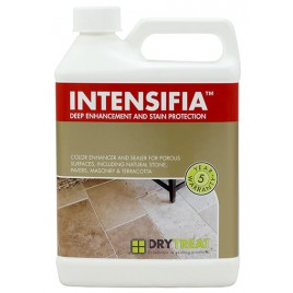 Intensifia Deep Enhancement and Stain Protection 1 Gallon